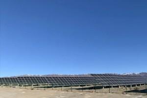 公司浙能北塔山50MW光伏发电项目成功并网送电